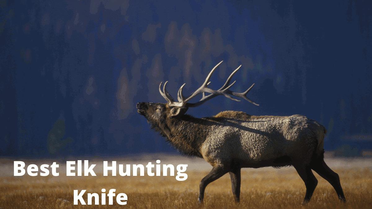 Best elk hunting knife